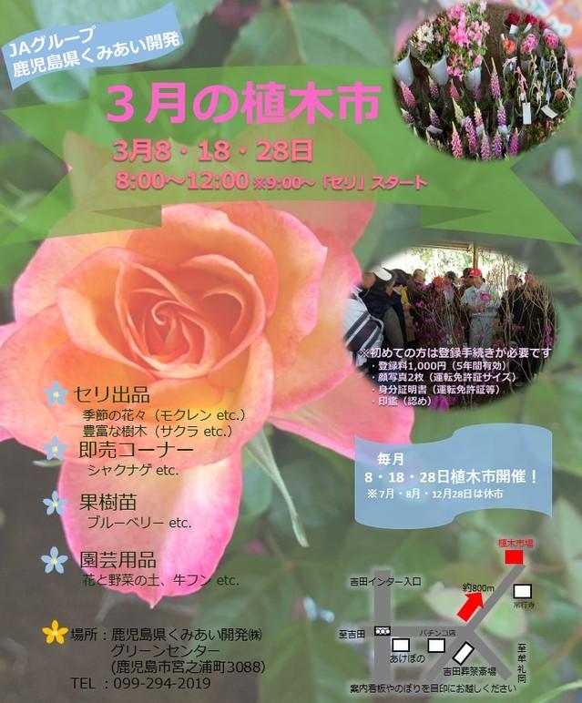 3月植木市開催画像.jpg